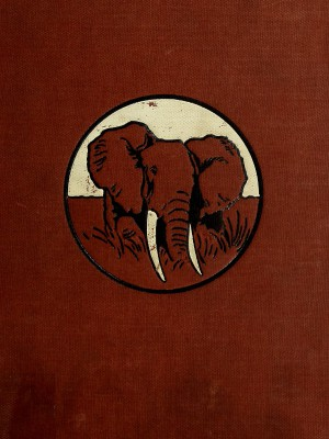 In Wildest Africa, vol 1 (of 2) by Carl Georg Schilling from StreetLib SRL in Classics category