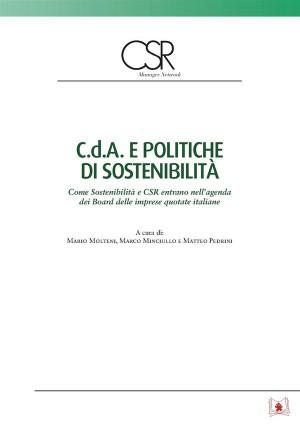 C.d.A e politiche di sostenibilità by Matteo Pedrini from StreetLib SRL in Business & Management category