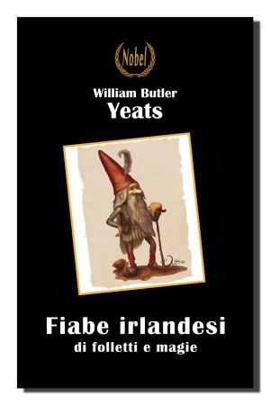 Fiabe irlandesi di folletti e magie by Luisa Pecchi (traduttore) from StreetLib SRL in General Novel category