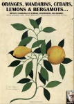 Oranges, mandarins, cedars, lemons and bergamots... by Luca Stefano Cristini from  in  category
