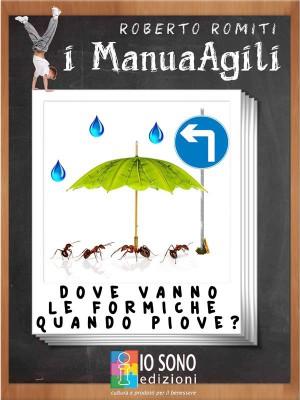 Dove vanno le formiche quando piove by Roberto Romiti from StreetLib SRL in Religion category