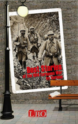 Best Stories of the 1914 European War by Various from StreetLib SRL in History category