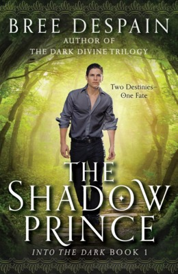 The Shadow Prince by Bree Despain from Trajectory, Inc. in Teen Novel category