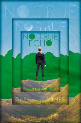 No True Echo by Gareth P. Jones from Vearsa in Teen Novel category
