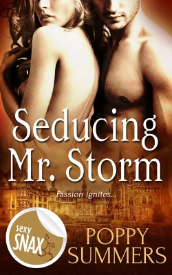 Seducing Mr. Storm by Poppy Summers from Vearsa in General Novel category