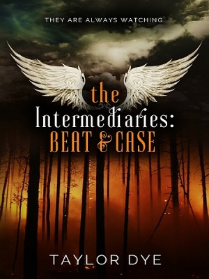 The Intermediaries: Beat & Case by Taylor Dye from XinXii - GD Publishing Ltd. & Co. KG in General Novel category