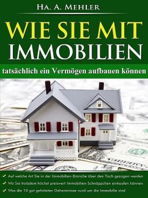 Wie Sie Mit Immobilien Tatschlich Ein Vermgen Aufbauen By Ha A Mehler From In