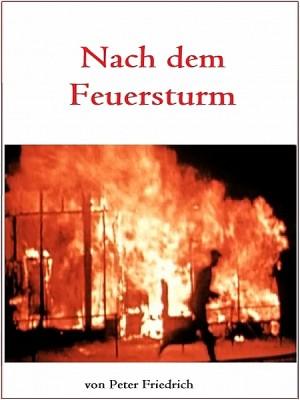 Nach dem Feuersturm by Peter Friedrich from XinXii - GD Publishing Ltd. & Co. KG in General Novel category