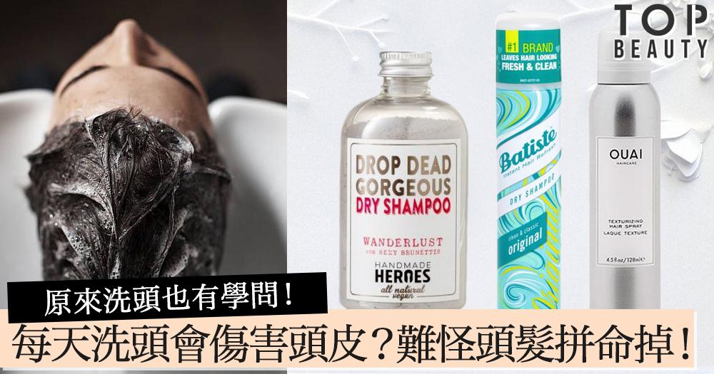 原來洗頭也有學問! 每天洗頭反而會對頭皮造成傷害?難怪頭髮拼命掉!
