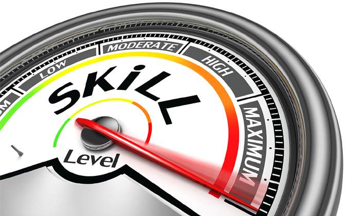 Skills meter to show Singapore providing industry-specific skills