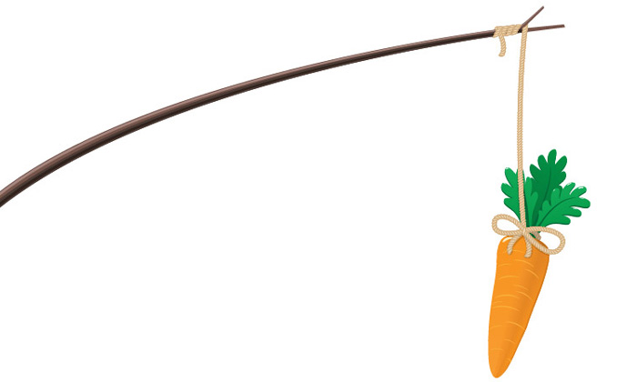 Rewards carrot