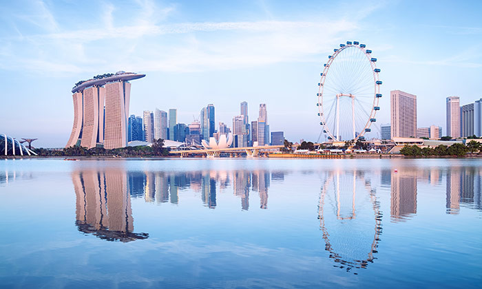 how to issue work hliday pass insgapore