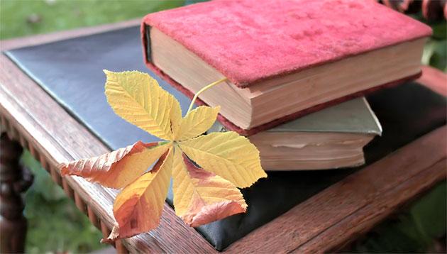 leaf-bookmark-iStock