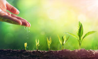 Priya-Dec-2019-LnD-planting-seeds-of-knowledge-iStock