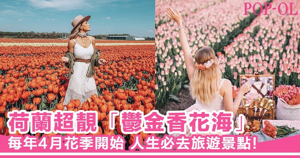 人生必去旅遊點之一!帶你睇荷蘭Lisse超靚「鬰金香花田」,沈醉在春天的氣息中~!