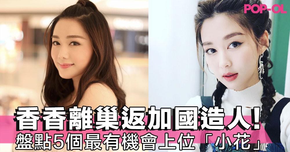 岑麗香離巢返加國造人,下次到邊個上位?盤點TVB最有機會發圍的5位「小花」~!