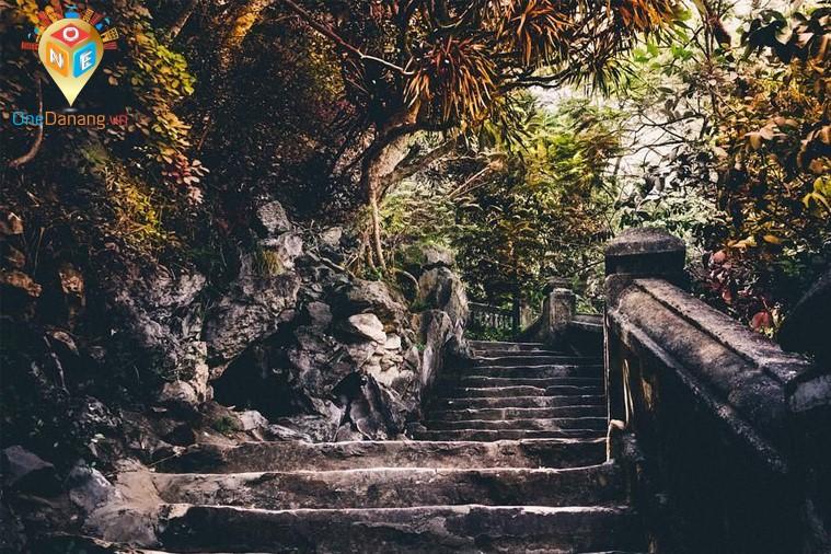 Sơn Trà - Ngũ Hành Sơn - Hội An (xuất phát buổi chiều)
