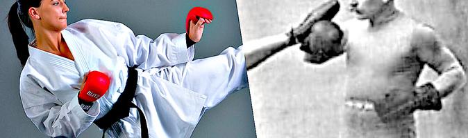 Khac nao nhau vs cho karate taekwondo Hệ thống