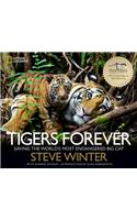 Tigers Forever: Saving the World's Most Endangered Big Cat