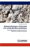 Biobeneficiation of Bauxite Ore Using Bacillus Polymyxa