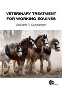 Veterinary Treatment for Working Equines