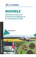 Biofuels: Meeting the Energy and Environmental Challenges of the Transportation Sector