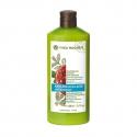 Anti - Recurrence Dandruff Shampoo - 300 ml