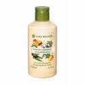 Energizing Body Lotion Mango Coriander