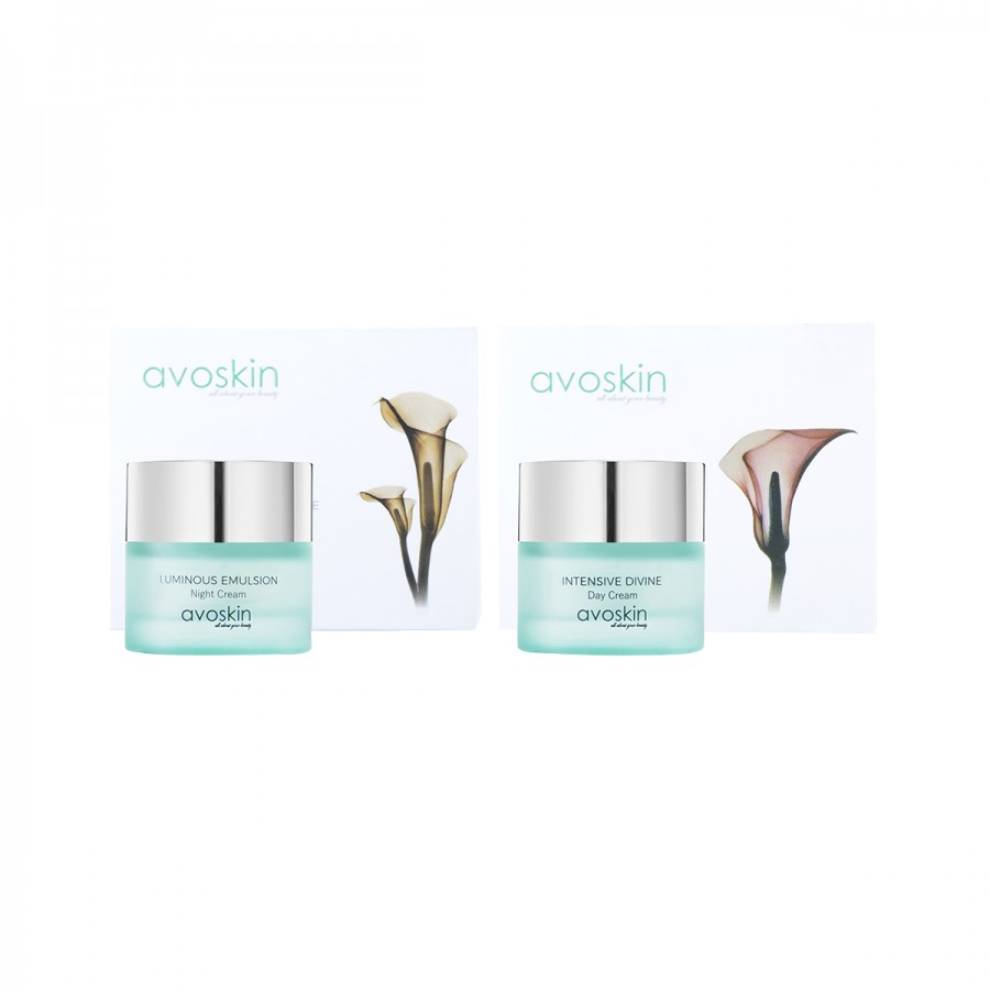 Avoskin Basic Kit
