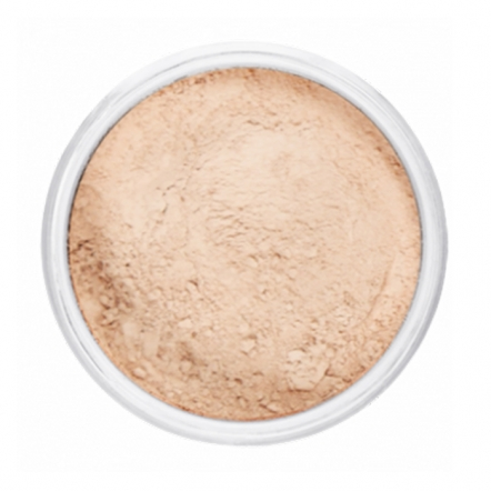 Silky Smooth Translucent Powder