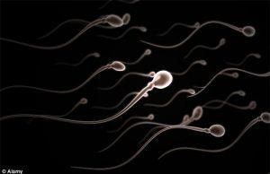 Ecomedic - he sinh thai y te - hoi bac si mien phi - vô sinh 2