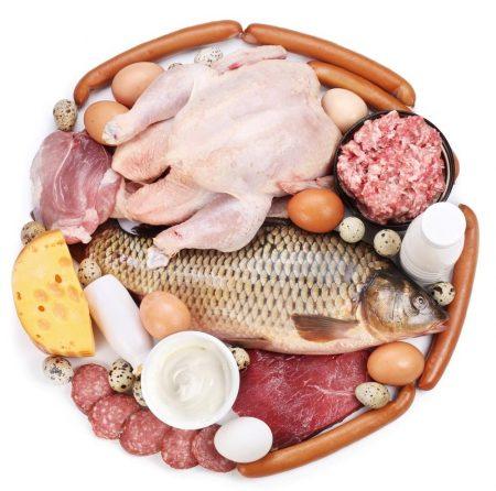 Kết quả hình ảnh cho Nhóm chất đạm và chất béo