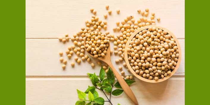 Eating Soy Is Good for Your Health