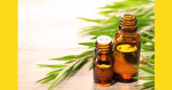 Use Tea Tree Oil to Get Rid of Moles