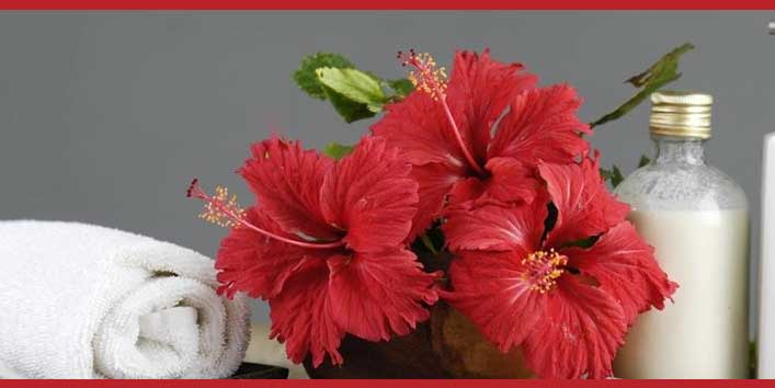 Ways to Use Hibiscus for Healthy Hair
