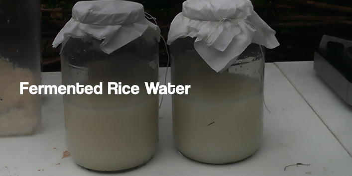 Method 2- Fermented Rice Water