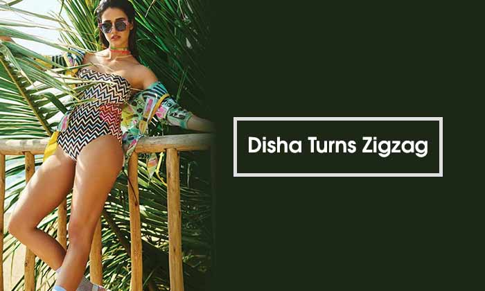 Disha Turns Zigzag