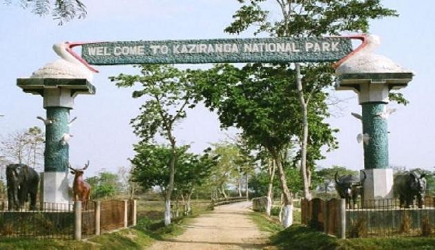 2 अक्टूबर से विजिटर्स के लिए खुल जाएगा काजीरंगा नेशनल पार्क
