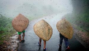 असम और मेघालय में भारी बारिश की चेतावनी