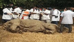 असम में खतरनाक वायरस से हुई गैंडे की मौत, जल्द सुलझेगी गुत्थी