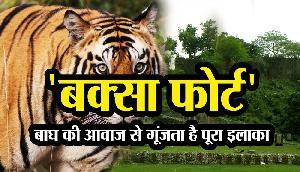 'Buxa Fort' : बाघ की आवाज से गूंजता है पूरा इलाका