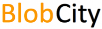 Android App Development Internship at BlobCity in
