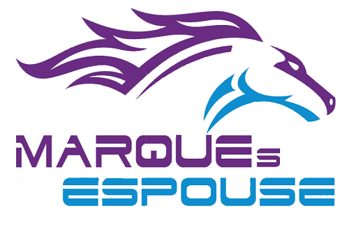 Digital Marketing Internship at Marques Espouse in