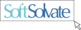 Web Development Internship at SoftSolvate in Delhi