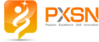 Web Development Internship at Paexskin Solutions Private Limited in Pune