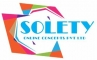 Mobile App Development Internship at Solety Online Concepts Private Limited in Secunderabad, Hyderabad