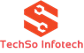 Web Development Internship at TechSo Infotech in Jaipur