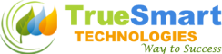 Human Resources (HR) Internship at True Smart Technologies in Bangalore