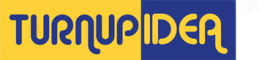 Business Development (Sales) Internship at Turnup Idea Private Limited in Navi Mumbai