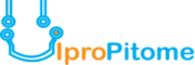 Accounting & Taxation Internship at Uipropitome Tech (OPC) Private Limited in Patna